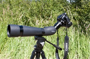 Camera and telescopic lens on a tripod