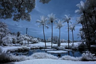 infrared-photography
