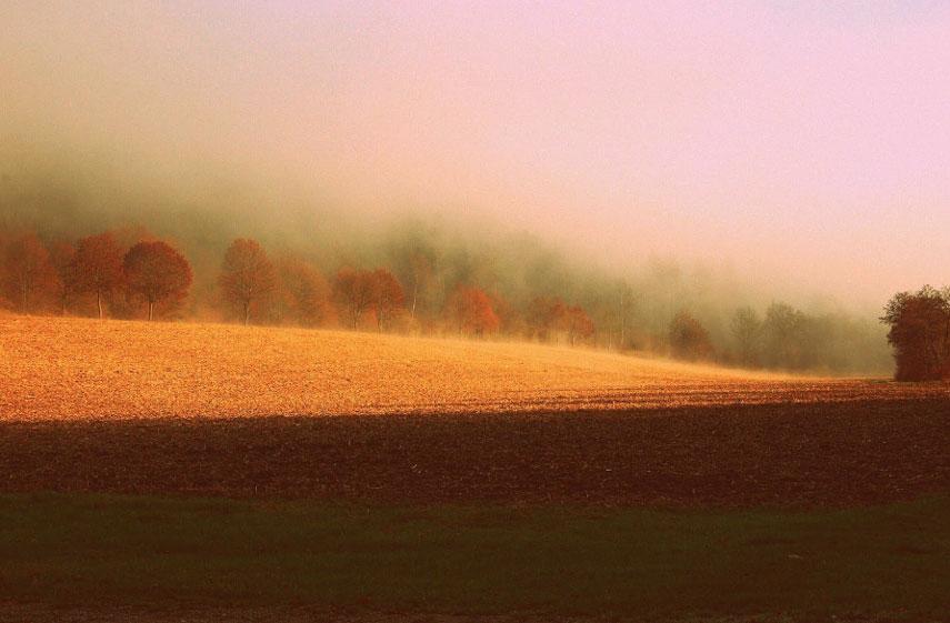 warm-color
